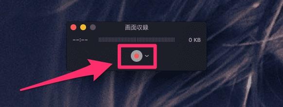 録画ボタンを押す